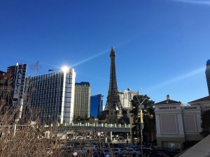 The Land of Oz: The Southern Guide to Visiting Vegas
