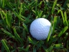 Things to Do: YFC's Legacy Golf Tournament