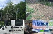 How I got a $1000 Tree removal done for less than $100