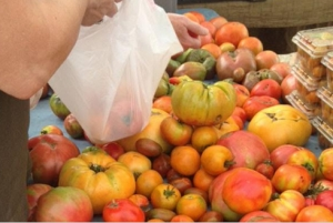 Taste of Summer: Farmer's Market Fun