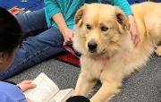 Libby is always glad to hear the students' read to her. The students, in turn, can relax and improve their reading skills.
