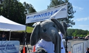 Big Al hanging out at the Finish Line of the Tuscaloosa Kids' Triathlon.