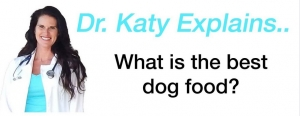 Ask Dr. Katy: Best Food For Dogs?
