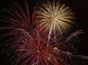 Tuscaloosa's Celebration on the River 2017 kicks off at 6 p.m. on July 4, and will culminate in a Tuscaloosa Symphony Orchestra performance and a fireworks show. All events are free.