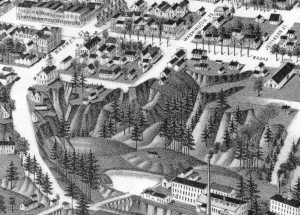 The gully at the end of Washington St. (now Lurleen Wallace Blvd. North). Broad and Market Streets are now University Blvd. and Greensboro Ave. respectively. Detail from an 1887 perspective map.