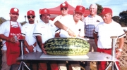 The McAbee Cook Team prepares a watermelon. From L to R: Ronnie Pugh, Mike Copeland, Smiley Pugh, Harold McAbee, Don Tucker, Harold Simpson, D.L. Jones. The Pigfitters have been involved with BBQ & Blues since the event was known as BBQ & Blue Jeans.