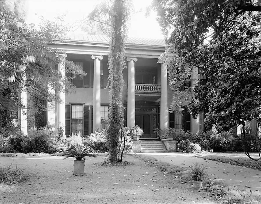 The magnolia partially shown on the right was almost 200 years old when this photograph was taken in 1939 for the Carnegie Survey of Architecture of the South. Wisteria vines can be seen hanging from the lowest branches.