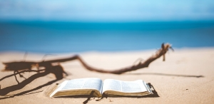 Summer Beach Reads 2019: DCL Recommends